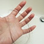 頭髪と貫禄のこと(ハゲは得する?)