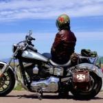 バイク便の荷箱